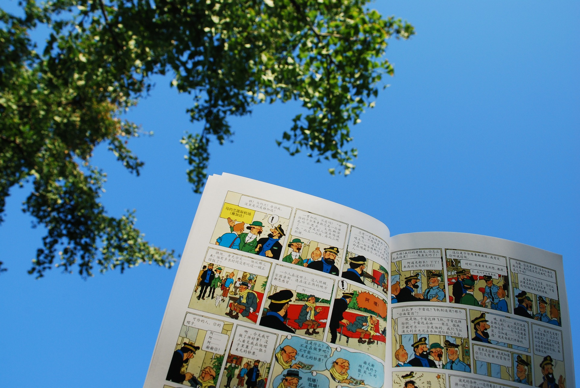 A day in Brussles, Following Tintin