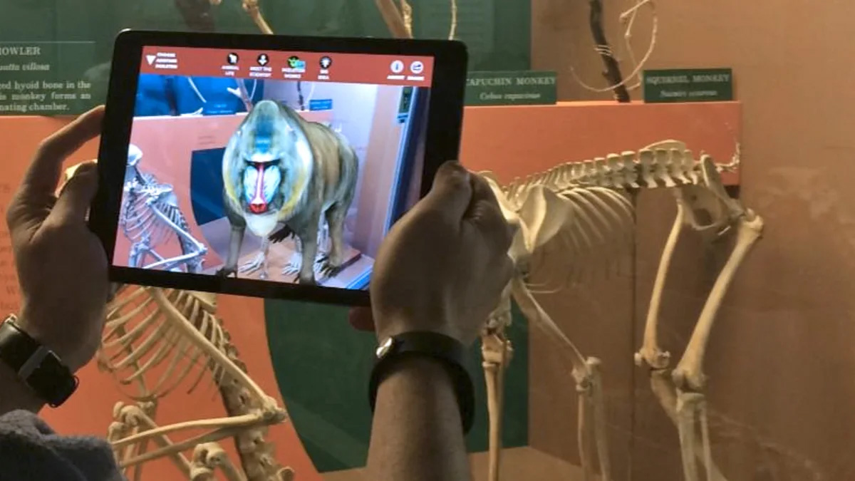 Augmented Reality (AR) in Tourism